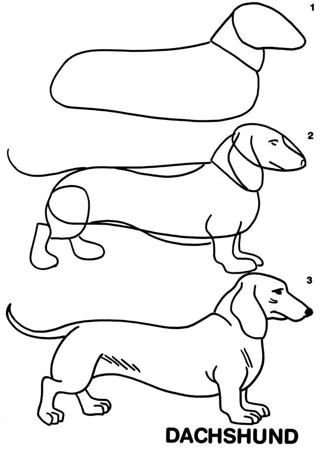 dachshund puppies coloring pages - photo#7