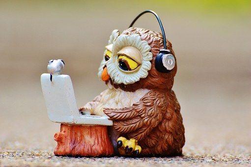 Owl, Computer, Headphones, Funny, Laptop