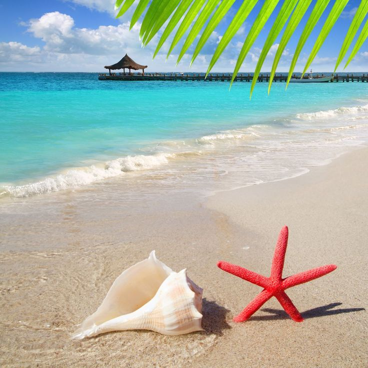 Iniciativa Corona Save the Beach, campaña de limpieza de playas mexicanas - http://plenilunia.com/estilo-de-vida/iniciativa-corona-save-the-beach-campana-de-limpieza-de-playas-mexicanas/29477/