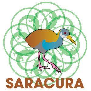 Nós somos umafamília dedicada a demonstrarque um mundo mais verde é possível.Em 1998, saímos da Austrália para o Brasil e fundamos o Ecocentro IPEC que é hoje o maior centro de referência em su…