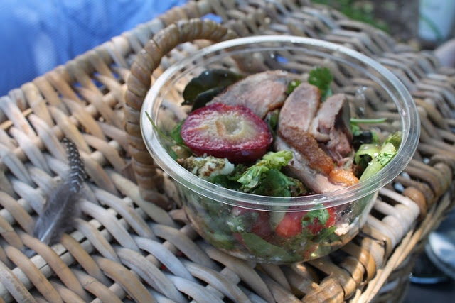 Festive salad - warm duck, plum and goat's cheese / lunch >> served in an EcoPack eco-friendly PLA deli container