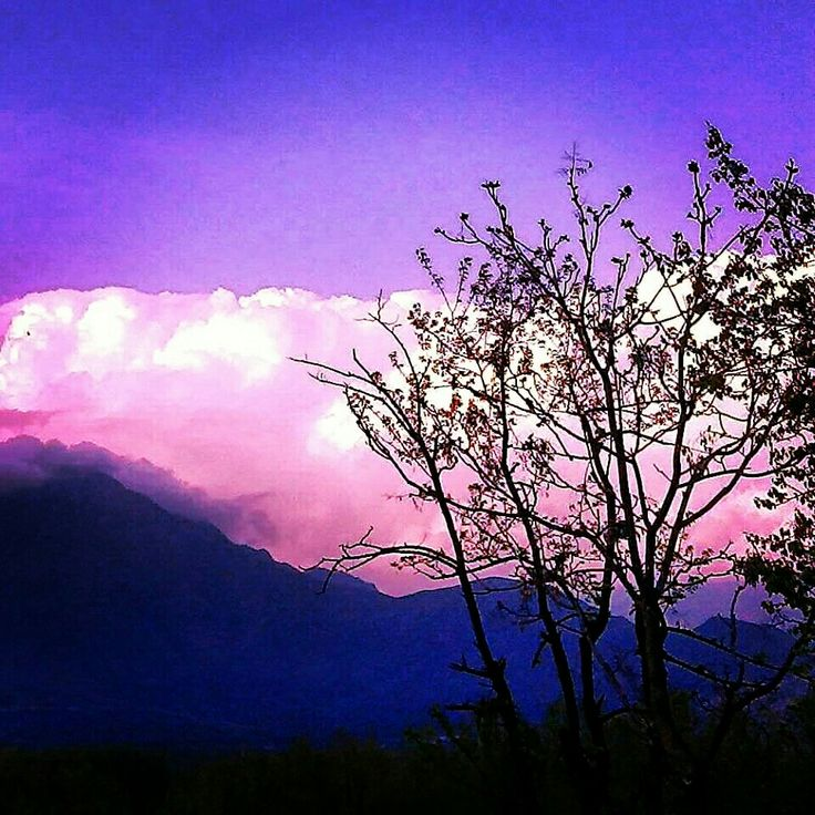 Evening Colors :-) #Kashmir #nature