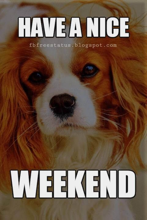 The Weekend Quotes Sayings With Beautiful Weekend Images