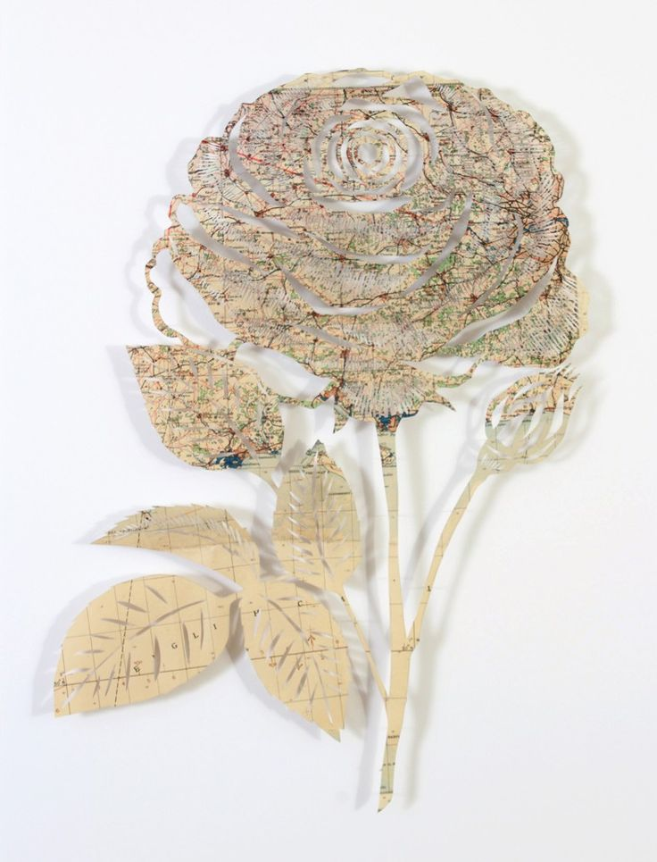 A rose is a rose is a rose claire brewster paper art