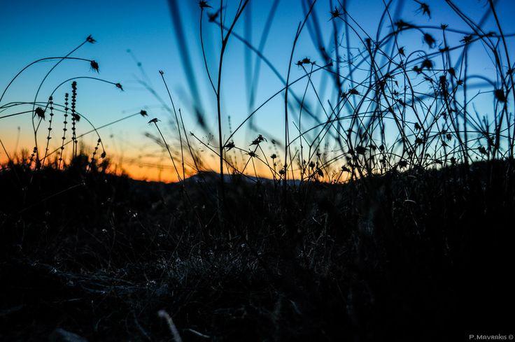 Nature by Panagiotis Mavrakis on #500px #chios #tholopotami #greece