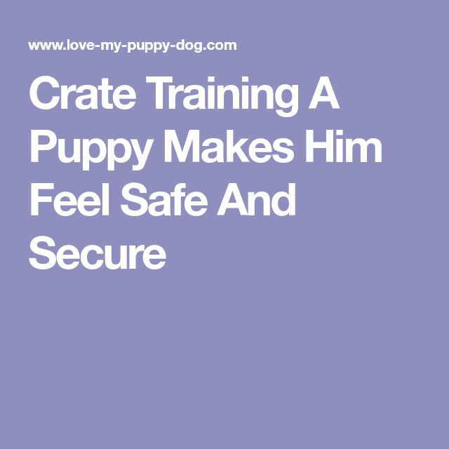 Crate Training A Puppy Makes Him Feel Safe And Secure #puppytrainingcrate