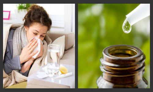 Oli essenziali anti raffreddore: quali sono e come utilizzarli