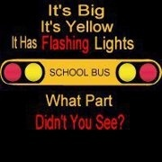 OMG so true!! I never could understand how people miss seeing my BIG YELLOW bus and FLASHING RED lights!!!