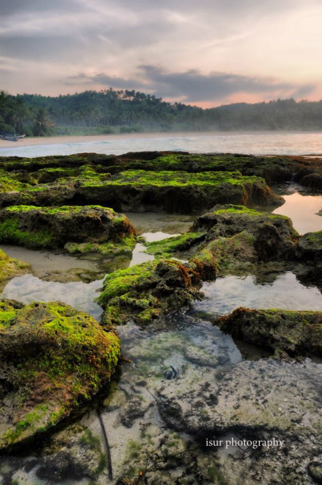 Tanjung pari beach, sawarna, sukabumi