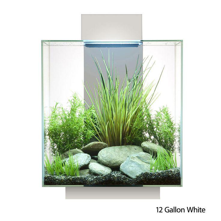 Fluval EDGE Aquarium & Accessories 12 Gallon LED White