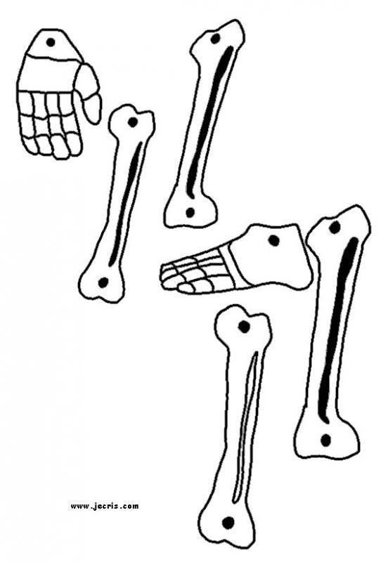 educational modules on the human body and mr bones skeleton assembling game homeschool. Black Bedroom Furniture Sets. Home Design Ideas