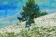 "New artwork for sale! - "" Campotosto L Aquila Abruzzo Italy  by PixBreak Art "" - http://ift.tt/2lVqR0H"