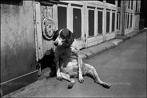 Forget sitting like a lady, I'm wore out. Joseph Koudelka