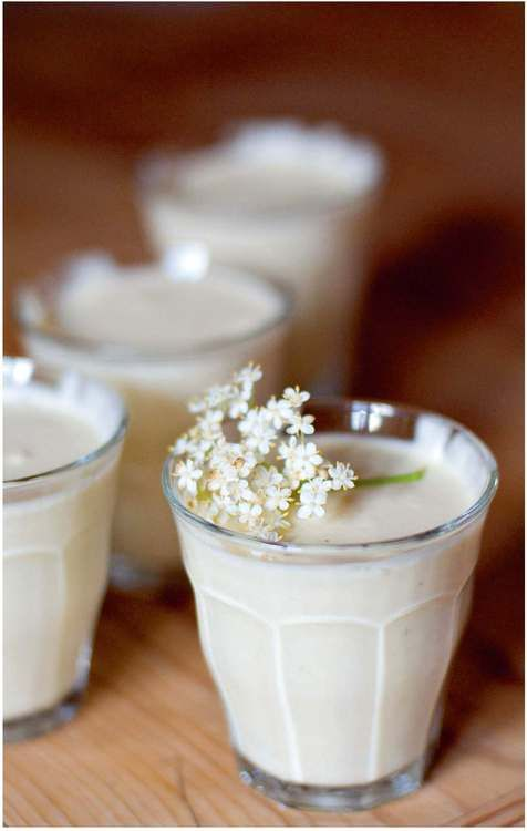 062314 elderberry flowers ~ Recipe of the Week - Gooseberry Fool with Elderflower