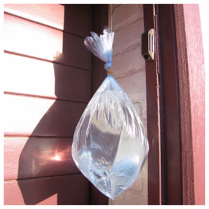 TIP tegen vliegen!! Een bakje met water en wat hele kruidnagels, gegarandeerd geen vliegen meer in huis! Staat bij mij beneden op de keuken tafel en het hele huis is vrij van vliegen. Of een doorzichtig boterham- of diepvrieszakje met water vullen en ophangen in de deur- en raamopening. Om één of andere reden komen de vliegen dan niet binnen. Muggen wel