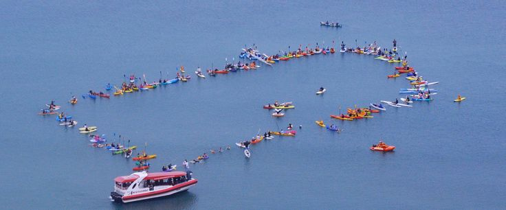 Hundreds paddle out for whales in Hervey Bay #whalewatching #QLDblog