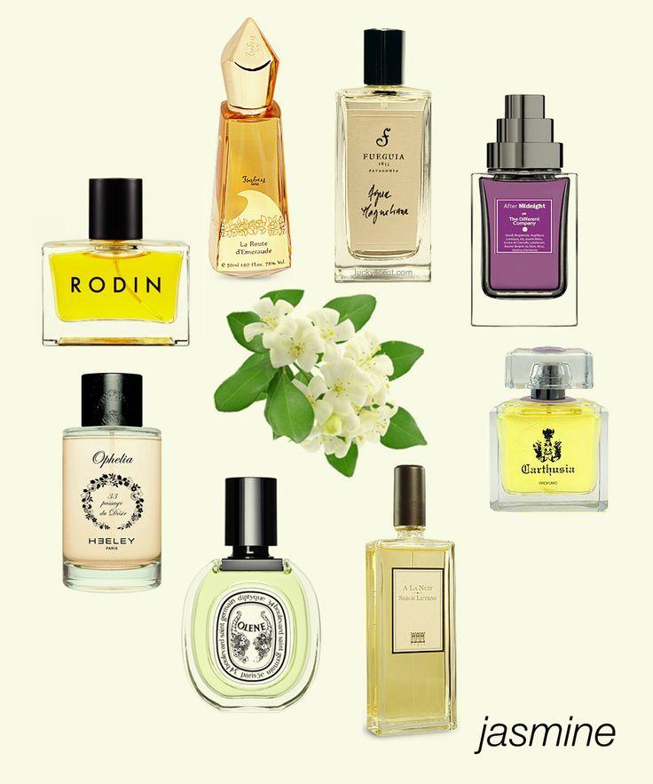 Our Irresistible Jasmine picks: La Route d'Emeraude, Agua Magnoliana, After Midnight, Gelsomini di Capri, A La Nuit, Olene, Ophelia, and Rodin EDP. #niche #perfume #luckyscent