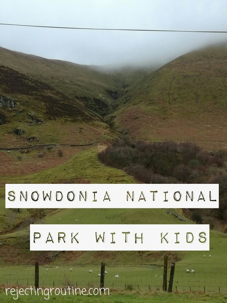 Find out why you should visit Snowdonia National Park with kids.
