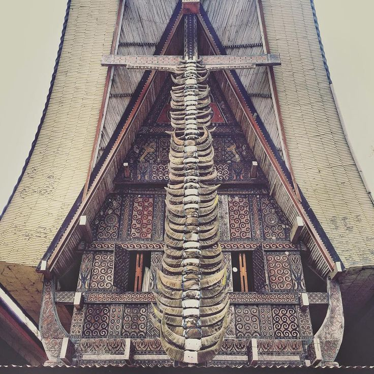 """47 """"kerbau"""" or water buffalo horns adorn a traditional Toraja's house or Tongkonan. Buffalo is sacrificed during funeral ceremony or Rambu Solo. For a higher caste family, minimum 24 buffalos are sacrificed, costing up to $100,000 for a rare spotted buffalo but on average $1500-2500 for each. . I am Andri Tambunan @andritambunan, documentary photographer based in Indonesia. I am taking over IPA Instagram this week and I will be sharing exclusive behind the scenes photos from a personal…"""