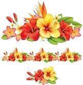fiori di ibisco : Ghirlanda di fiori tropicali