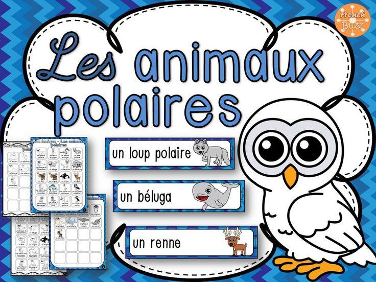 29 mots-étiquettes et des pages de lexique en couleurs et en noir et blanc pour pratiquer le vocabulaire des animaux polaires.