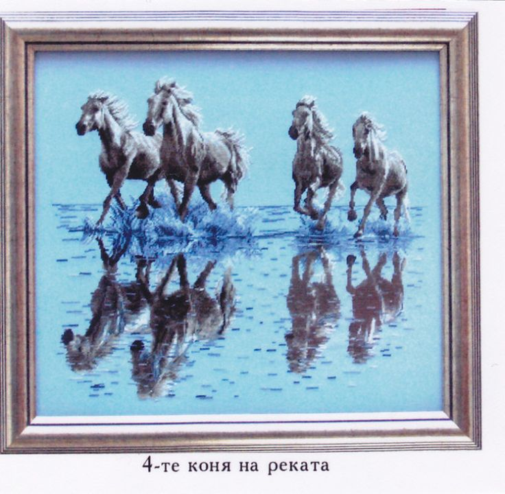 Gallery.ru / Фото #1 - 1 - benji67