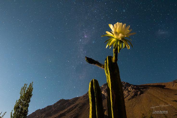 Cómo planear una buena astrofotografía - ¡Imperdible esta nueva serie de tutoriales!
