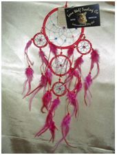 Decorative Bead/Feather Dream Catcher (Small): A beautiful small dream catcher with stunning decadent beads set in silver or gold webbing, measuring 12cm in diameter.  This dream catcher comes in various amazing colours.      Choose from Red, Royal Blue, Pink, Purple and Aqua.