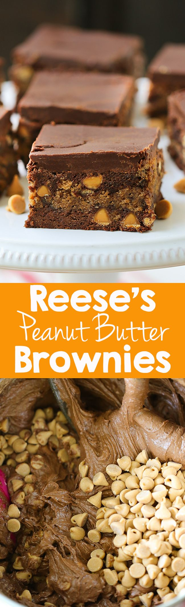 Fudgy, rich, peanut butter marbled throughout decadent chocolate brownies. #chocolate #dessert #recipe