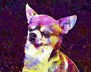 "New artwork for sale! - "" Chihuahua Dog Chiwawa Small  by PixBreak Art "" - http://ift.tt/2tHg5CC"