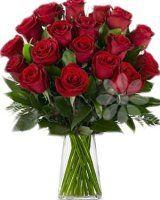 100 růží - rozvoz květin