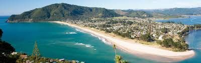 Image result for pauanui