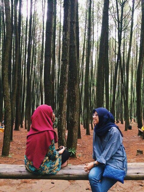Pine Forest, Yogyakarta.