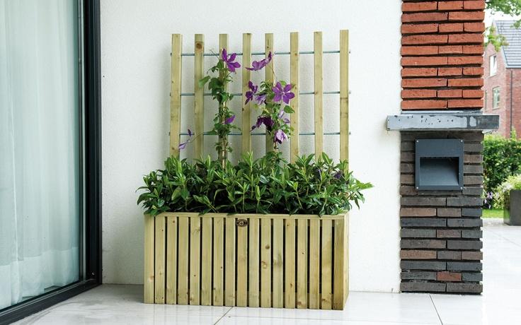 Elan Trellisbloembak Excellent heeft een verfijnde vormgeving in combinatie met een trellis als steun voor klimplanten. Zeer geschikt voor toepassing tegen een muur of om een terras af te bakenen. De zijkanten van de bloembak zijn gemaakt van houten balkjes met ca. 1 cm tussenruimte wat een bijzonder stijlvol effect geeft. In de bloembak zit een zwarte binnenzak wat de tuinaarde binnenboord houdt.