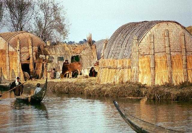 iraq reed houses