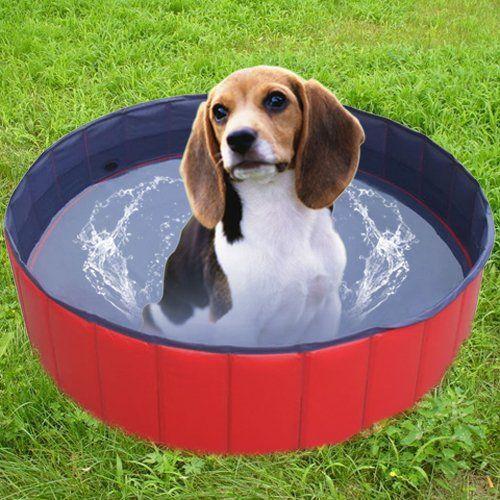 Aus der Kategorie Badezubehör  gibt es, zum Preis von EUR 26,21  <br>  <b></b>Doggy Pool Hunde POOL Hundepool  <br>  <b></b>Hunde POOL Doggy Pool Hundepool  <br>  <b></b>Hundepool Hunde POOL Doggy Pool  <br>  <b></b>Doggy Pool Hunde POOL Hundepool  <br>  <br>  <br>Becken-Innenboden mit Anti-Rutsch-Funktion.  <br>Bei Nichtgebrauch: platzsparend, zusammenlegbar; besonders  <br>starkes und robustes Material - krallenbewährt, mit praktischem Wasserablassventil; leicht und hygienisch zu reinigen…