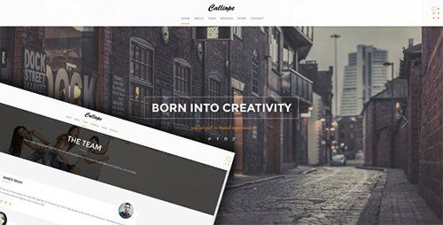 Calliope v1.0  Portfolio Agency WordPress Theme  Blogger Template
