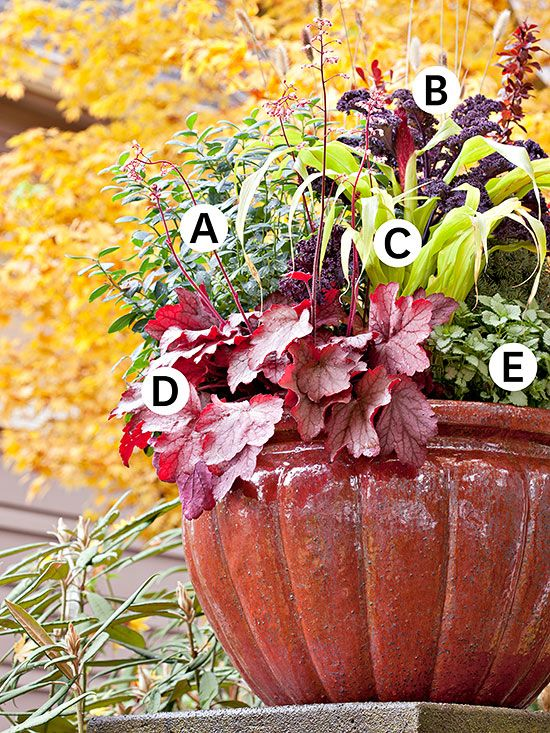 Fantastic Fall Container Gardening Ideas Gardens Fresh