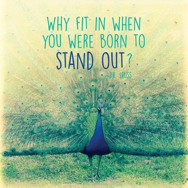 Why fit in when you were born to stand out? thedailyquotes.com