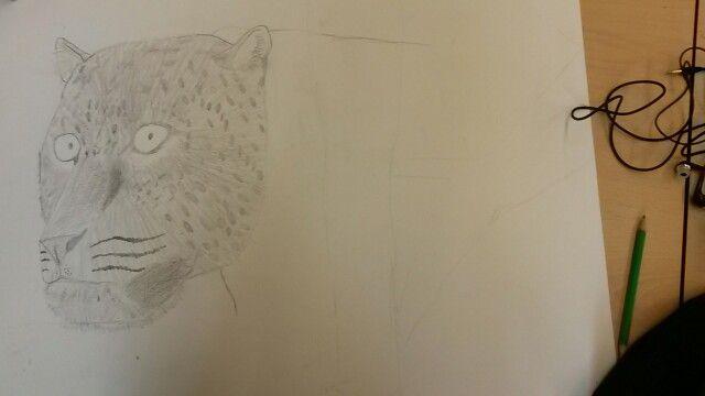 Bij deze tekening heb ik het haar van de luipaard gemaakt ik heb gelet op de richtlijnen van het haar en zo kwam het eruit te zien.. foto 3