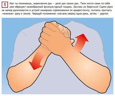 Предлагаем вашему вниманию простые и эффективные упражнения для мышц, которые позволят вам в короткие сроки увеличить мышцы рук.источник