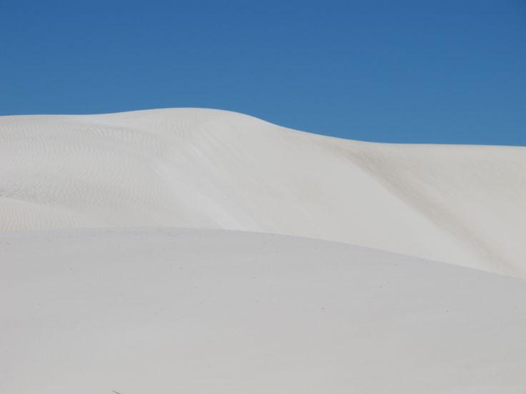 Sand Dunes Photographer: Shelley Wilton