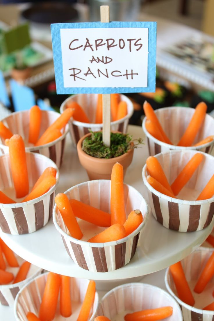 Another Fun way to serve Veggies & Dip... peter rabbit baby shower idea. Cute idea for a spring baby! Wish I thought of this.