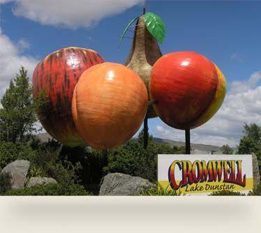 Mighty Big Fruit Cromwell, Central Otago, NZ