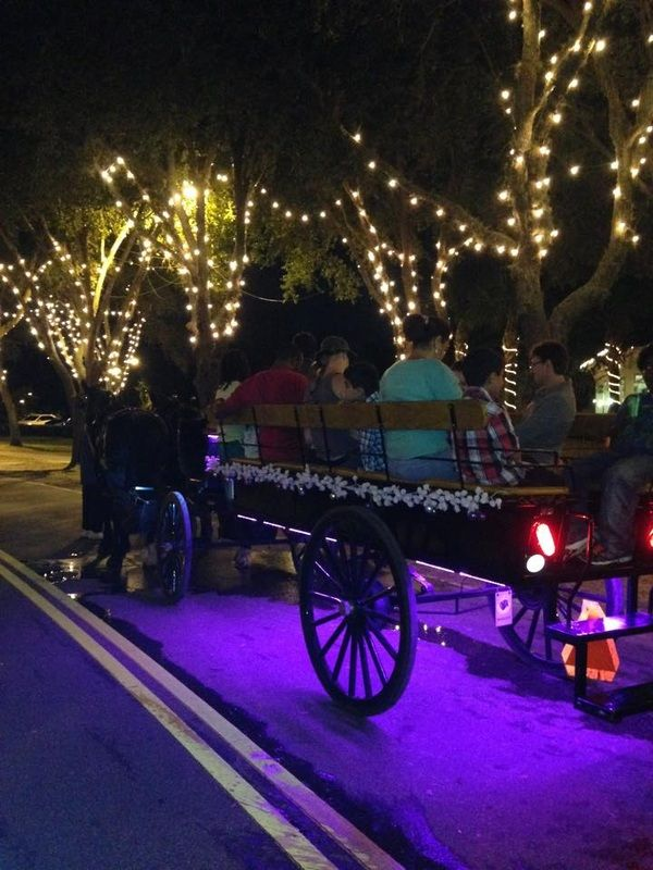 St. Augustine Nights of Lights Tours - Wine & Carriage tour!