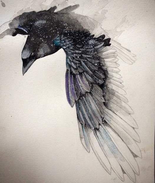 The raven flies