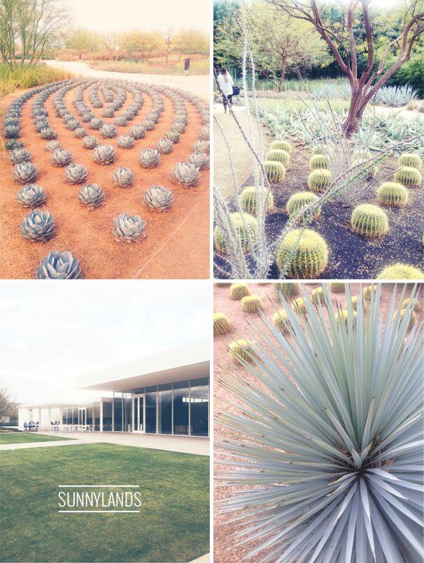 66 best sunnylands center gardens images on pinterest for Palm springs landscape design