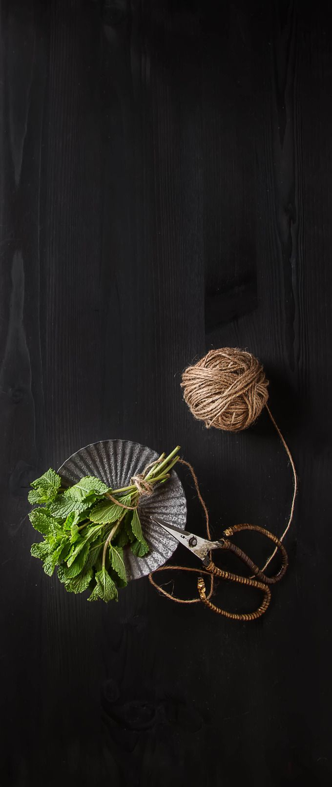 Sprig of garden mint on dark wooden background with vintage scissors and old…