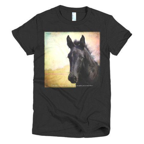 Friesian Filly Horse Short sleeve women's tee shirt Brantford, Dundas, Ontario