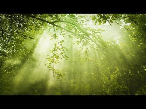 Relaxing Sleep Music: Deep Sleeping Music, Relaxing Music